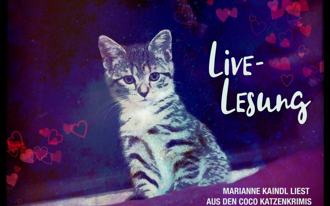 """Die 1. Live-Lesung aus """"Sechs Katzen und ein Todesfall"""""""