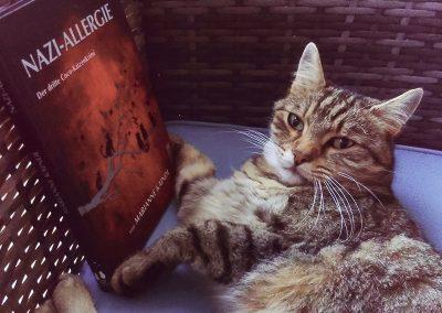 Bubu liest KatzenKrimis