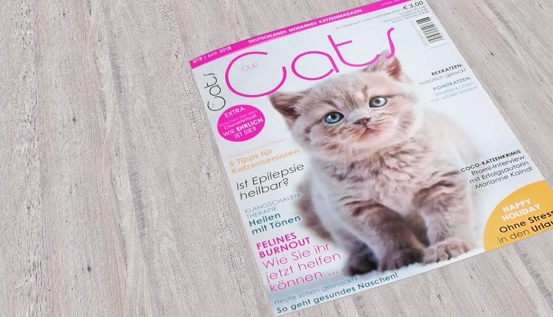 """Zu gewinnen: 3 Exemplare der """"Our Cats"""" mit Cocos Foto und Frauchens Interview"""